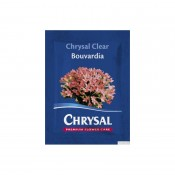 Flower powder food for cut blossom Bouvardia Chrysal Clear