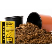 Peat substrate Brill, 13l
